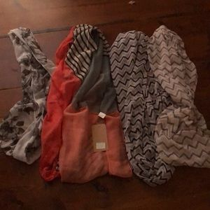 Scarves set of 4